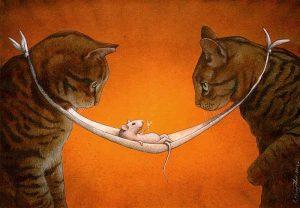 Pawel Kuczynski cat