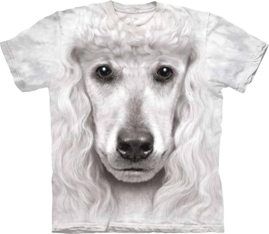 magliette barboncino