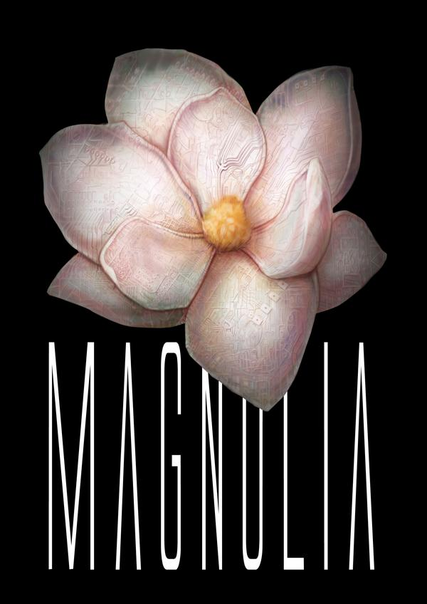 Magnolia Paolo Ladu