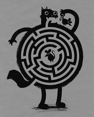 gatto labirinto