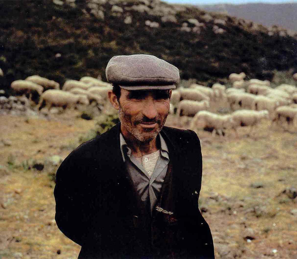 pastore con le capre