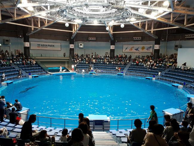 acquario di tokyo
