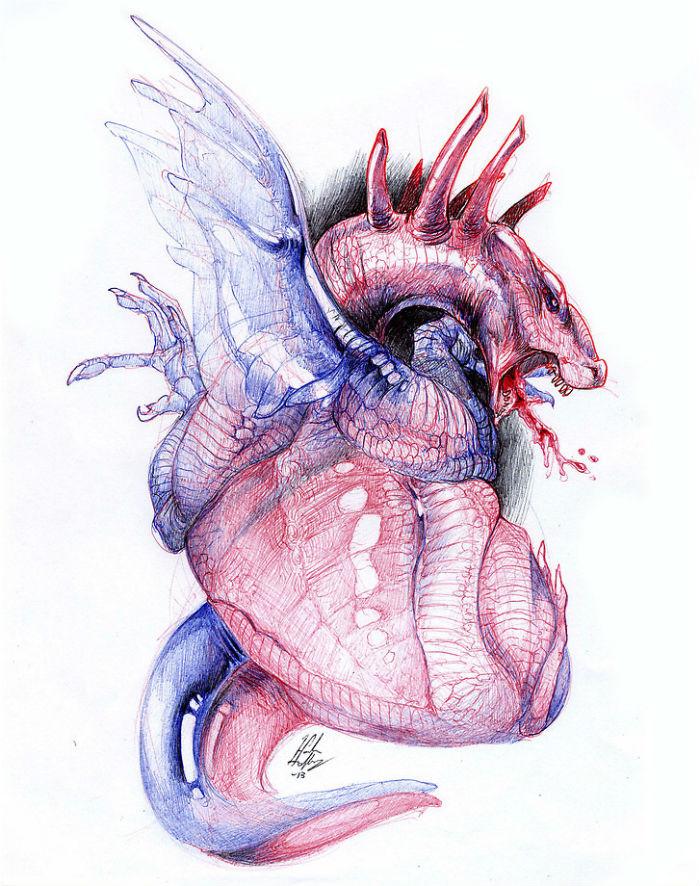 cuore di drago Morphology