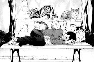 gatto manga
