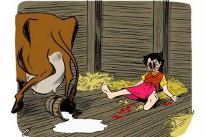heidi cartooncidio