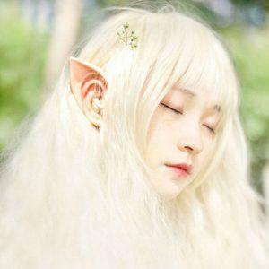 orecchie elfo
