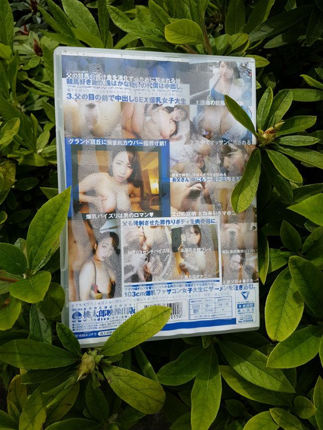 porno giapponese