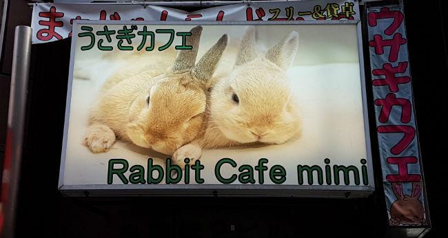 rabbit cafè tokyo