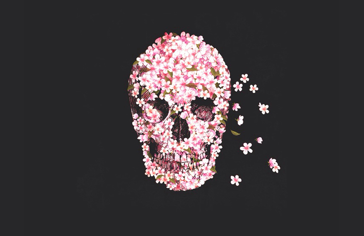 sakura skull